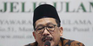 Wakil Ketua Umum MUI, Buya Zainut Tauhid Sa'adi. Foto: Istimewa.